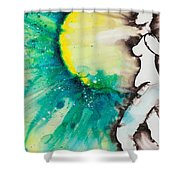 More Than Series No. 2030 Shower Curtain