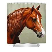 Morgan Horse - Flame Shower Curtain