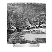 Mormon Emigrant Conestoga Caravan 1879 - To Utah Shower Curtain