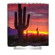 Morning Arizona Style  Shower Curtain