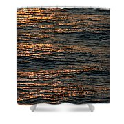 Morning Becomes Shower Curtain