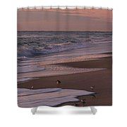 Morning Birds At The Beach Shower Curtain