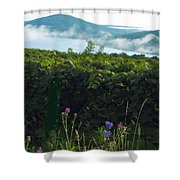 Morning Blossoms Shower Curtain