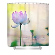 Morning Breeze And Beautiful Lotus Shower Curtain