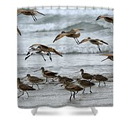 Morning Commute Shower Curtain