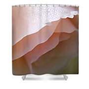 Morning Dew Peach Rose Flower Shower Curtain
