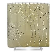 Morning Diamonds Shower Curtain