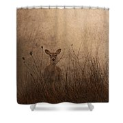 Morning Encounters Shower Curtain