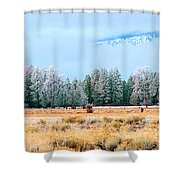 Morning Feed 21818 Shower Curtain