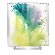 Morning Glory Abstract Shower Curtain