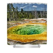 Morning Glory Pool Shower Curtain