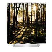 Morning In Canoe Country Shower Curtain