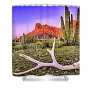 Morning In Organ Pipe Cactus National Monument Shower Curtain