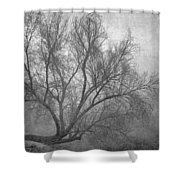 Morning In The Fog. M Shower Curtain