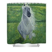 Morning In The Pasture Shower Curtain