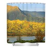 Morning Light Dances Shower Curtain