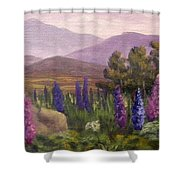 Morning Lupines Shower Curtain