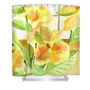 Morning Magnolias Shower Curtain