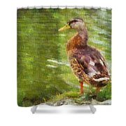 Morning Mallard Shower Curtain