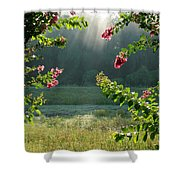 Morning Marsh Shower Curtain