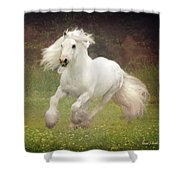 Morning Mist C Shower Curtain