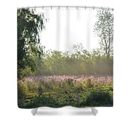 Morning Mist In The Pasture Shower Curtain