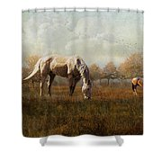 Morning Montage  Shower Curtain