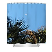 Morning Moon Over Palms Shower Curtain