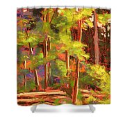 Morning On Beartree Road Shower Curtain