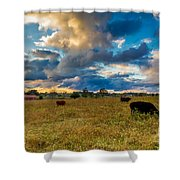 Morning On The Farm Two Shower Curtain