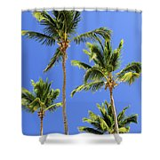 Morning Palms Shower Curtain