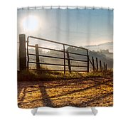 Morning Shadows Shower Curtain