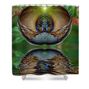 Morning Shell Shower Curtain