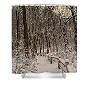 Morning Snow Path Shower Curtain