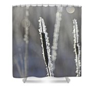 Morning Sparkle Shower Curtain