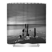 Morning Suds Bw Shower Curtain
