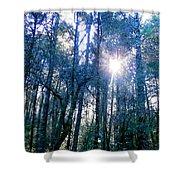 Morning Sun Rays Shower Curtain