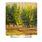 Morning Through The Trees Shower Curtain
