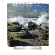 Morning Tide In La Jolla Shower Curtain by Sandra Bronstein