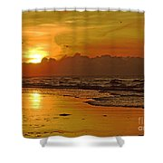 Morning Tide Shower Curtain