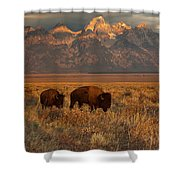 Morning Travels In Grand Teton Shower Curtain by Sandra Bronstein
