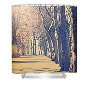 Morning Trees Shower Curtain
