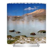 Morning Vapours Shower Curtain
