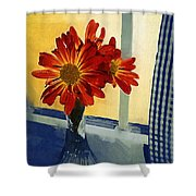 Morning Window Shower Curtain