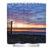 Morning With The Birds Shower Curtain