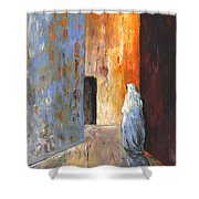 Moroccan Woman 02 Shower Curtain