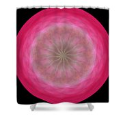 Morphed Art Globe 12 Shower Curtain