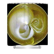 Morphed Art Globe 8 Shower Curtain