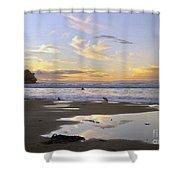Morro Rock Park Shower Curtain