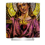 Mosaic 2 Shower Curtain